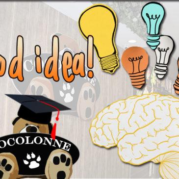 ¡Las ideas que te brinda Cocolonne!